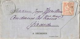 Trés Belle Lettre Pour Envoi Sans Enveloppe  Très Fraiche Excellent état Timbrée Mouchon - Lettres & Documents