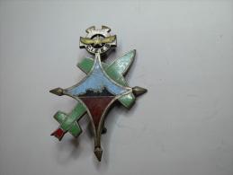Insigne Sahara C.I.E.E.S Reggan - Insignes & Rubans