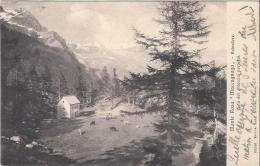 8097 - Monte Rosa Maccugnaga Belvedere Visita Dei Ghiaccial Perpetui - Verbania