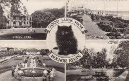 Good Luck From Bognor Regis Sussex - Bognor Regis