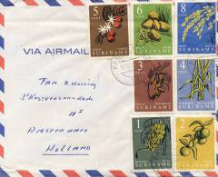 2 Poststukken Suriname (1961 En 1987) - Suriname