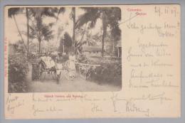Ceylon Colombo 1907-02-07 Foto A.W.A. Plâté - Sri Lanka (Ceylon)