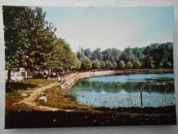 CP 92 CHAVILLE  - L'étang Des Ursines Vers 1980 - Chaville