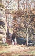 Unknown Tuck Artist - The High Rocks At Tunbridge Wells In Kent   -  7249 - Illustrators & Photographers