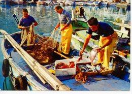 Retour De Pêche Au Soleil Du Midi -  N°22811 édit De France - Fishing