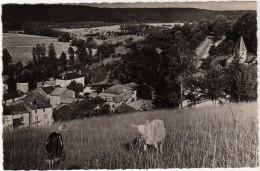 52 Provenchères Sur Marne (Ht Marne) Vue Générale ( Chèvres Photo Monté Froncles Ht Marne) - Sonstige Gemeinden