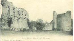 BULCY.....NIEVRE......Ruines Du Prieuré......animée.. - France