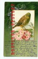 OISEAUX < Oiseau - Bird  Bird´s - Dos Scanné - Vögel