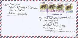 Ethiopia 2013 Alemtiena Village Postmark Antilope Cover - Ethiopië