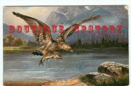 RAPACES <  AIGLE < Oiseaux - Oiseau Rapace - Bird  Bird´s - Dos Scanné - Vögel