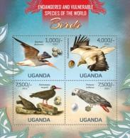 UGN13115a Uganda 2013 Birds Parrot Eagle s/s