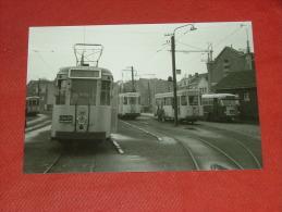RUMST  -  Trams : Lijnen 50 , 52 En Bus  -  Foto 13 X 9 Cm  -  1956 - Rumst