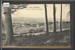 DISTRICT DE PAYERNE /// HENNIEZ  - TB - VD Vaud