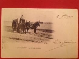 Cpa 33 ARCACHON Attelage Landais Carte Pionnière 1900 DND - Arcachon