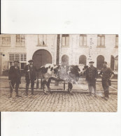 Carte Photo Militaire Allemand LEPER Belgique  Bataillon Chasseurs-Tampon Trésor- Poste 126-Marchand De Bestiaux ? Vache - Ieper