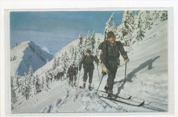 German Wermacht Skiing Soldiers - Guerre 1939-45