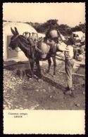 ALGARVE / LAGOS / PORTUGAL Postal Fotográfico Costumes Portugueses. Aguadeiro. Burro. Lavadeiras.Old Postcard - Faro