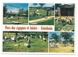 CPM - KINTZHEIM (67) Parc Des Cigognes Et Loisirs (très Animée) - France