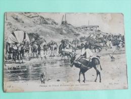 Guerre 1914 - ALGERIE, Passage De L'OUED EL OUTAIA Par Une Caravane - Oorlog 1914-18