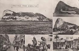 C1950 GREETINGS FROM GIBRALTAR - Gibraltar