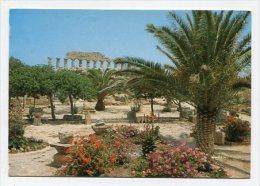ITALY - AK 173850 Selinunte - Tempio C (Apollo) - Otras Ciudades