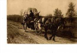 Carriole Avec 2 Chevaux - Fotos