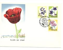 Lettre  Roumanie 1975  Fleurs (617) - Cartas