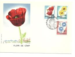 Lettre  Roumanie 1975  Fleurs (618) - Cartas