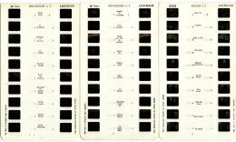 Carte Stéréoscopique Lestrade 10 Vues En Stéréo Belgique Bruxelles N°2 N° 3 Et N°4 (3 Cartes) - Photos Stéréoscopiques