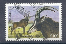 131007168  ZAMBIA  YVERT   Nº  561 - Zambia (1965-...)