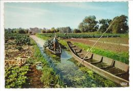80 - AMIENS (Somme) - Camon - Les Hortillonnages - Ed. La Cigogne N° 80.021.117 - Amiens