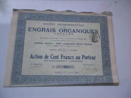 DEPARTEMENTALE DES ENGRAIS ORGANIQUES (1911) - Shareholdings
