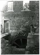 CHASTRE / Coril-Noirmont (Brabant Wallon) - Moulin/molen - Photo Véritable 18x24 Cm. Du Moulin De Cortil - Places