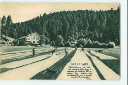 Publicité LINVOSGES - GERARDMER - Blanchiment Du Linge Sur Pré - 2 Scans - Advertising