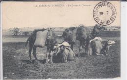 MAROC - CARTE Avec CACHET Du BUREAU TERRITORIAL De SETTAT (RARE) - Marokko (1891-1956)