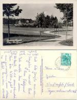 AK Nassau Im Erzgebirge, Altes Forsthaus, Fotokarte - Frauenstein (Erzgeb.)
