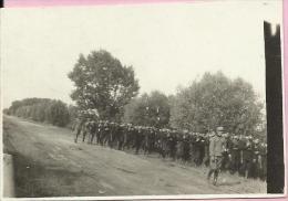 Photography - Army - Scouting to Belje, 1929., Kingdom Yugoslavia (8,5 x 5,5 cm)