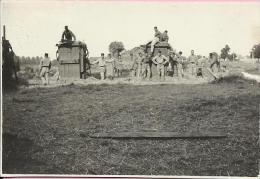 Photography - Army - Stacking hay in Osijek (Sjenjak), 1929., Kingdom Yugoslavia (8,5 x 5,5 cm)
