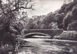 Grupont - Pont Route Sur La Lhomme (grand Format) - Tellin