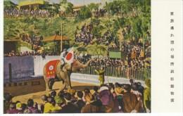 Unknown Japan City Zoo, Elephants Performs C1920s/30s Vintage Postcard - Elephants