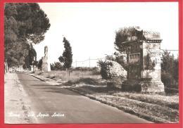 CARTOLINA VIAGGIATA  ITALIA - ROMA - Via Appia Antica - ANNULLO ROMA 10 - 10 - 1966 - Roma