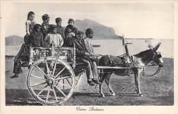 Carro Siciliano. - Unclassified