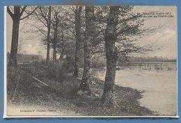 44 - BOUAYE --   Bords Du Lac De Grand Lieu - Bouaye