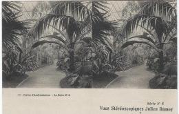 Carte Postale / Vue st�r�oscopique Julien DAMOY/Jardin d�acclimatation/voiture � Autruche/S�rieN�6/Vers 1910   STE64
