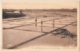 44. LE CROISIC. Les Marais Salants. Panorama Vers Batz. 27 - Le Croisic