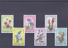 Lesotho. Flore.Fleurs - Lesotho (1966-...)