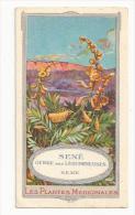 CHROMO VIN DEBREYNE... Les Plantes Médicinales..SENE, Genre Des Légumineuses, SENE - Andere