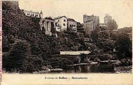 Sauveterre   1236          ( Vue Du Gave )  . - Autres Communes
