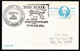 U.S.  DOG  MAIL  1981  MAINE - United States
