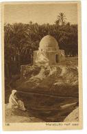 CARTOLINA COLONIALE - LIBIA - BENGASI - MARABUTTO NELL'OASI - VIAGGIATA ANNO 1920 - Libia